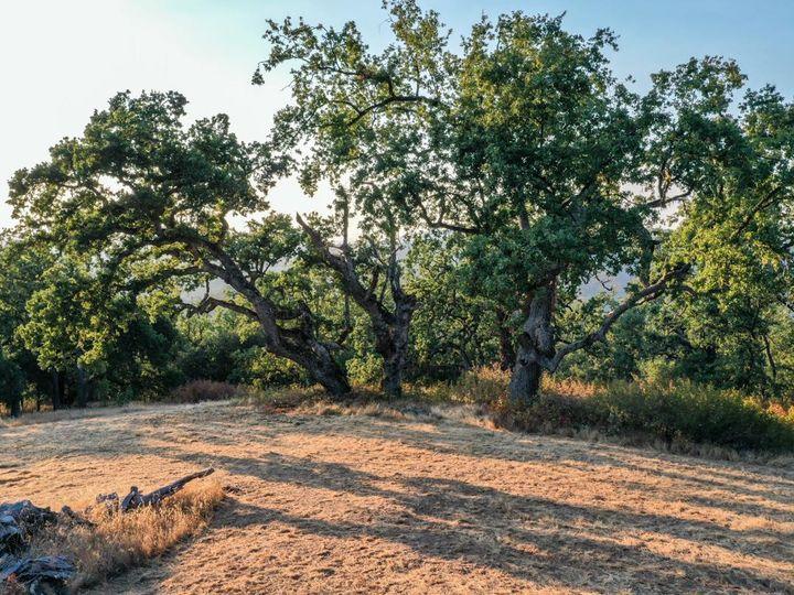 21 Long Ridge Trl Carmel CA. Photo 8 of 22