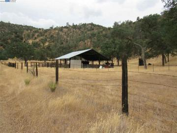 15062 Del Puerto Canyon Rd, Patterson, CA