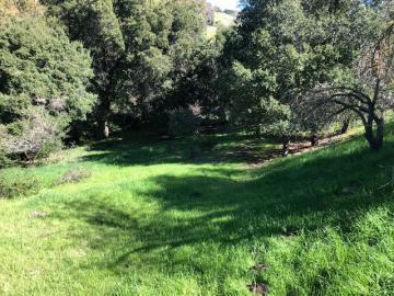 15560 Lori Anne Ln, East Foothills, CA