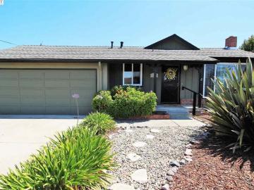 16064 Via Harriet, San Lorenzo Vilg, CA