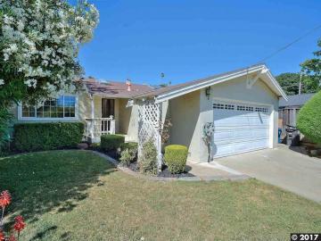 33082 Basswood Ct, Tamarack Knolls, CA