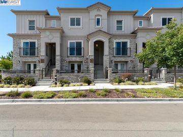 3988 Fossano Cmn, Irvington, CA