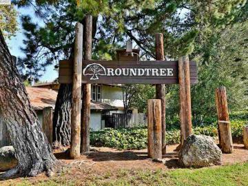 5462 Roundtree Dr, Roundtree, CA