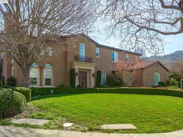 7294 Huntswood Ct Pleasanton CA Home. Photo 2 of 40