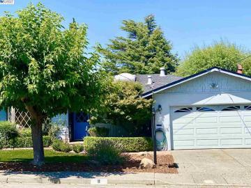 8 Lenglen Ave, San Rafael, CA