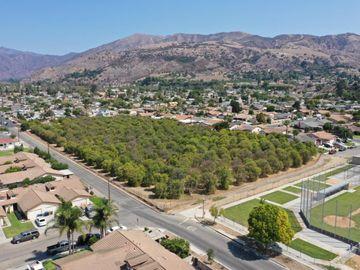 860 3rd St, Fillmore, CA