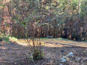 975 Creek Dr, Boulder Creek, CA