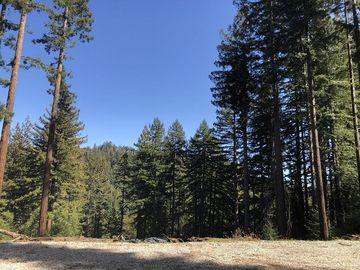 Little Buck Rd, Boulder Creek, CA